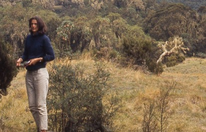 5 things you might not (yet!) know about the Dian Fossey Gorilla Fund