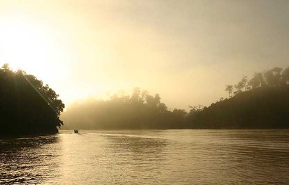 Victory for wildlife in Malaysia river region